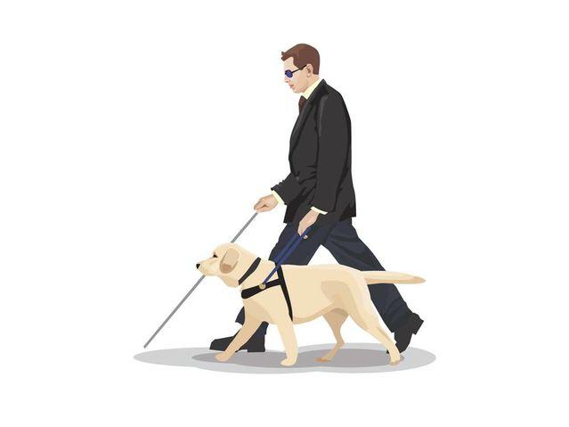Animace zobrazující muže v obleku s bílou holí a vodícím psem - bílým labradorem
