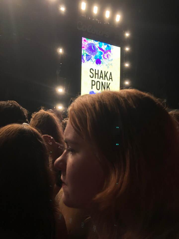 The concert of Shaka Ponk
